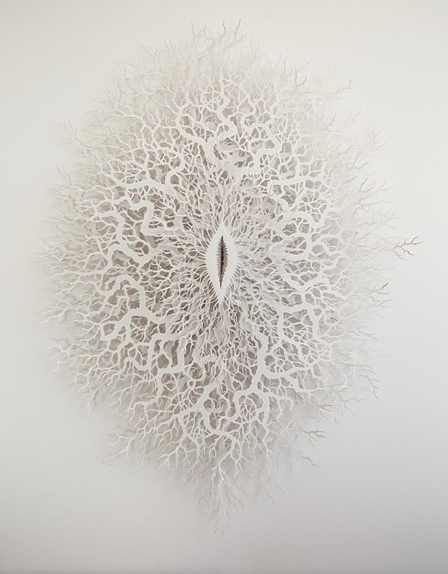 paper art, sculpture, blossom fossil, Rogan Brown