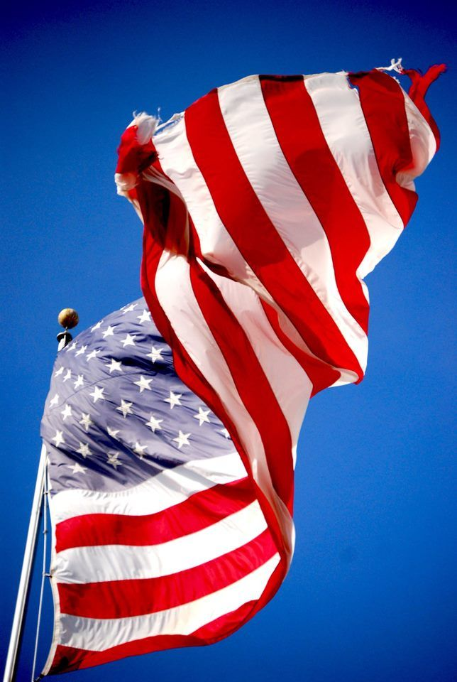 Home Of The Free Because Of The Brave Proud To Be An American American America American Pride