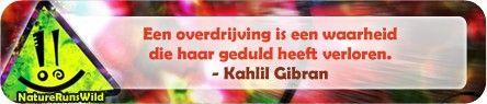 Een overdrijving is een waarheid die haar geduld heeft verloren. - Kahlil Gibran #citaat