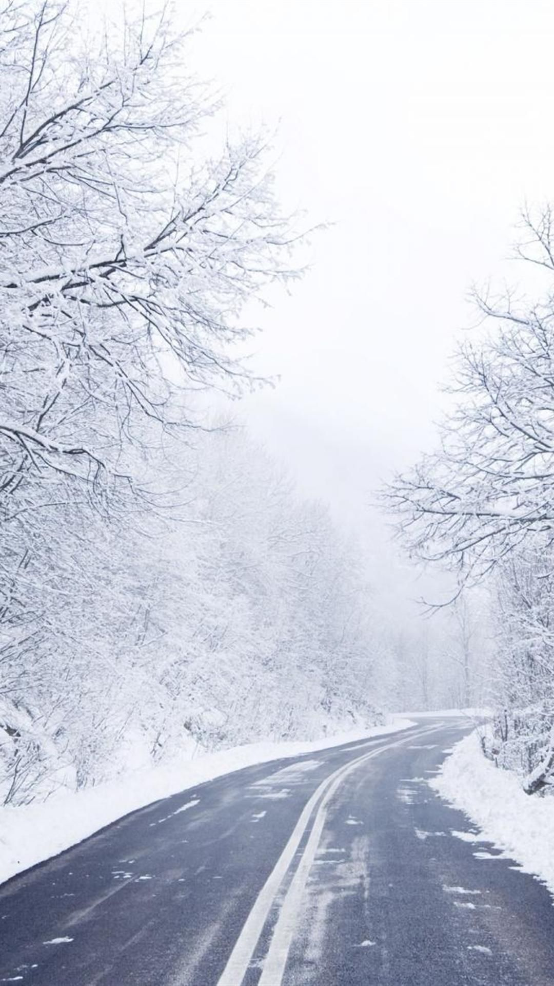 Cold Winter Road Iphone 6 Plus Wallpapers Winter Wonderland
