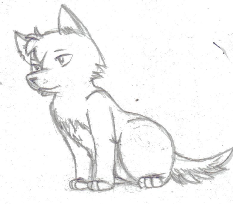 Easy sketch wolf how to draw a wolf pup