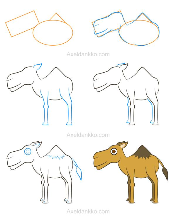 How to draw a camel comment dessiner un chameau - Dessiner un chameau ...