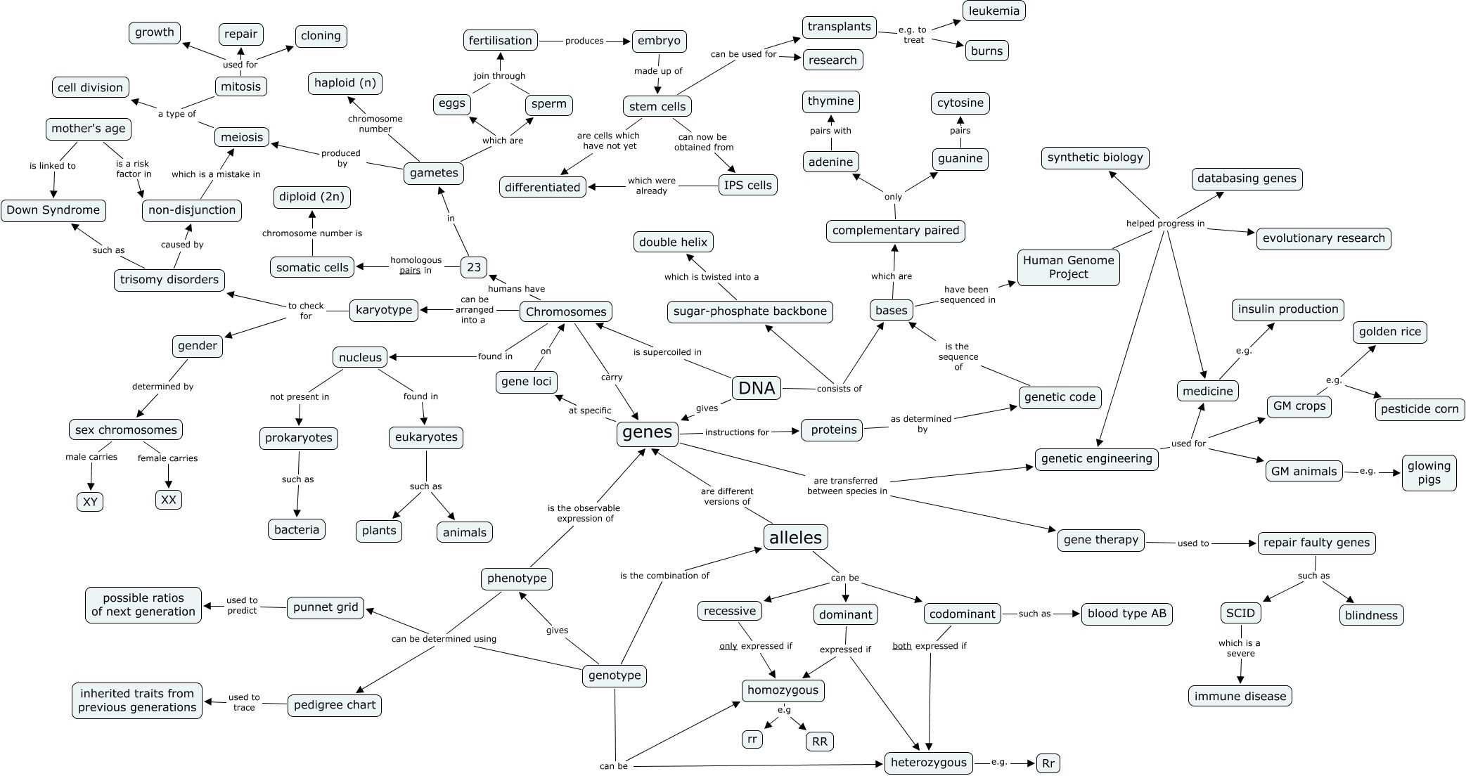 Image Result For Concept Map Of Genetic Modification Gcse