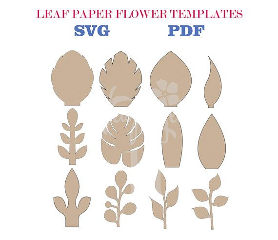 Set Of 12 SVG - PDF Leaf Templates Pdf, Template and Leaves