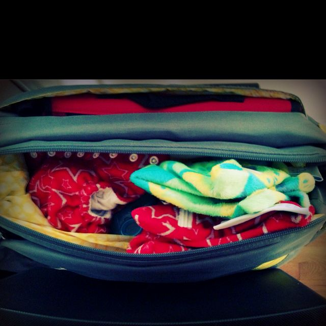 My diaper bag!  I cannot live without my ittibitti wet bags! #ittibittius