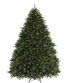 Majestic Balsam Fir Christmas Tree View More Of Our New Arrivals