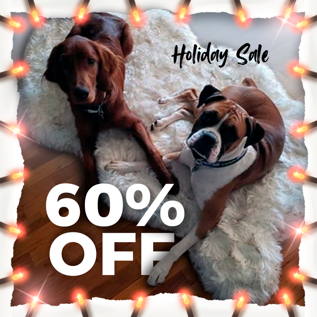 Holiday Sale 60 Off The Paw Fect Holiday Gift Best Orthopedic Dog Bed Cute Dogs And Puppies Faux Fur Dog Beds