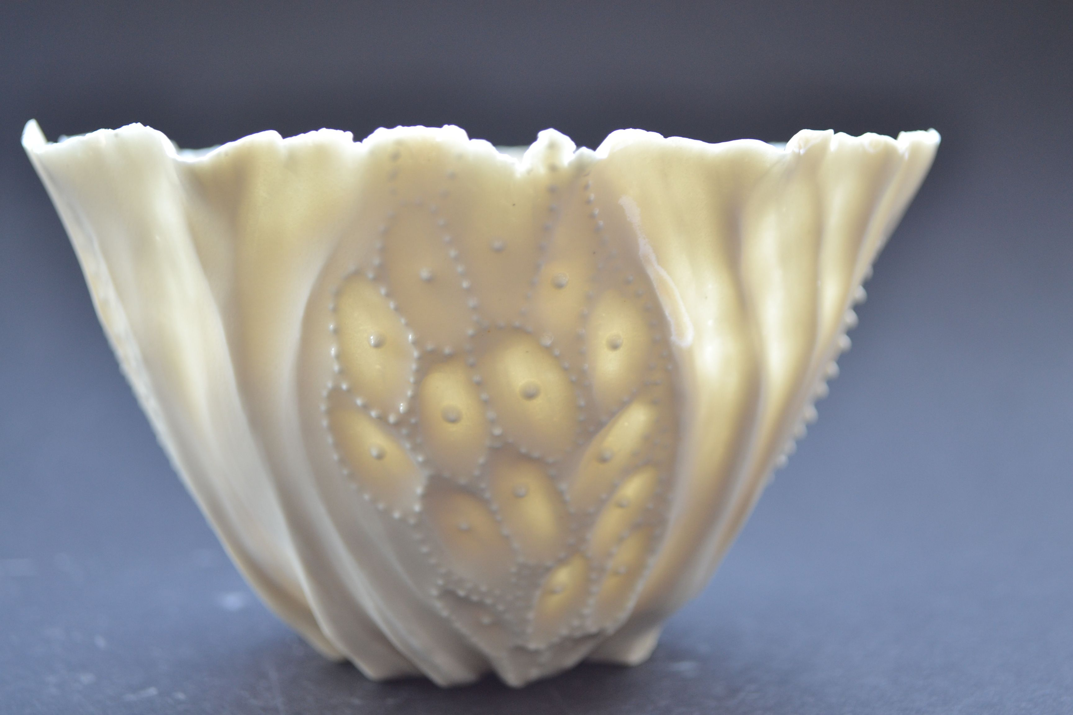white porcelain transperancy bowl