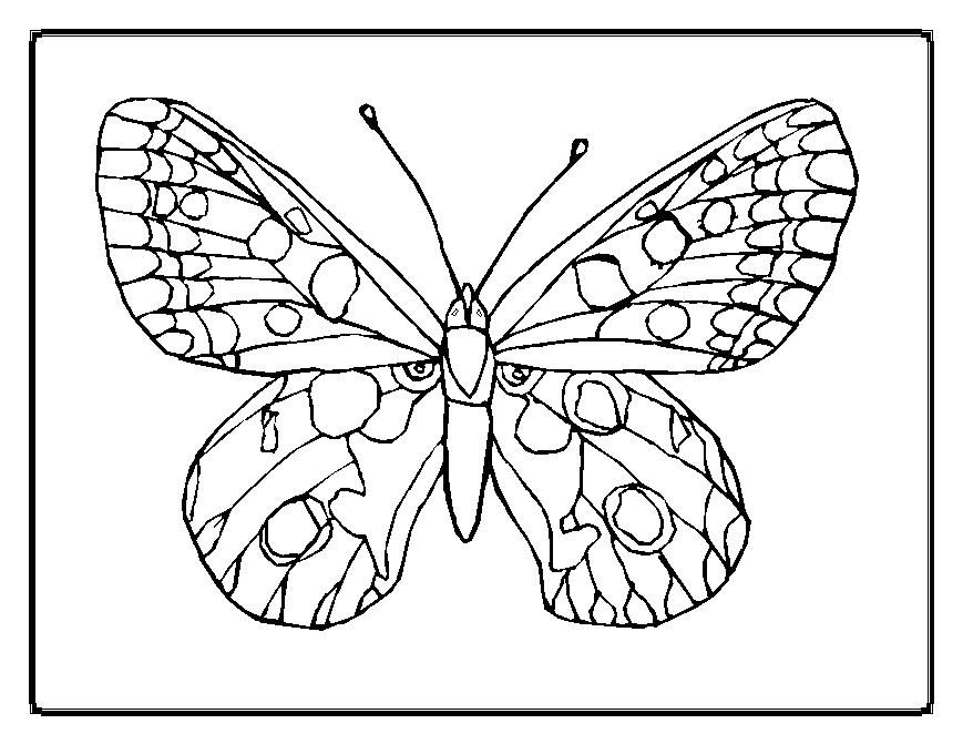 Printable Butterflies Coloring Pages Butterfly Coloring Page Flower Coloring Pages Free Coloring Pages