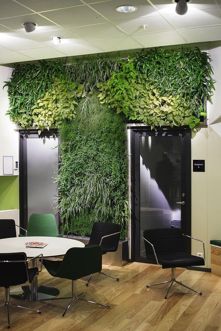 SkinWhiteningSoapReview IndoorAquaponicsSystem