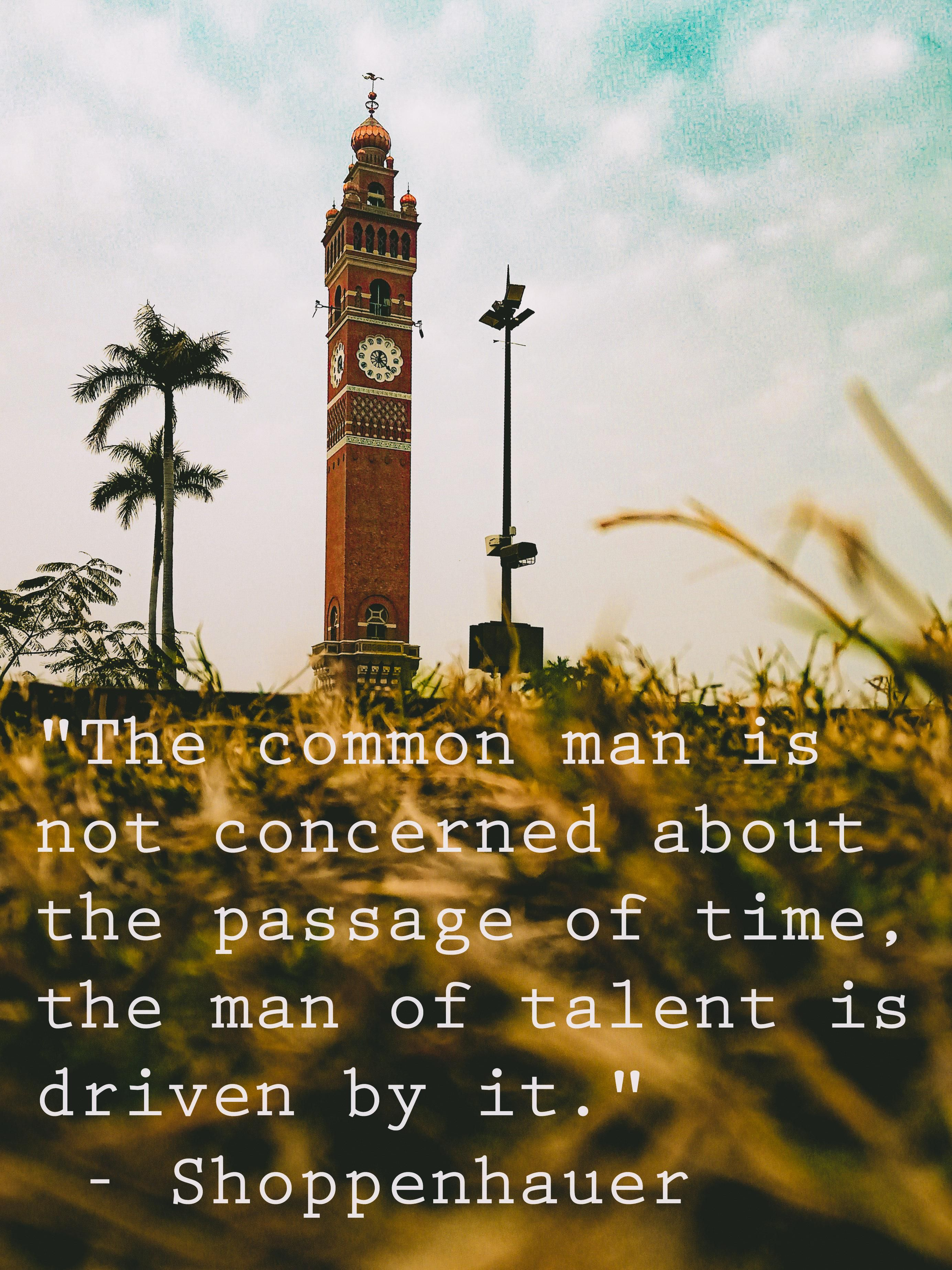 The Common Man Is Not Concerned About The Passage Of Time The Man Of Talent Is Driven By It Shoppenhauer 276 Insightful Quotes Brilliant Quote New Quotes