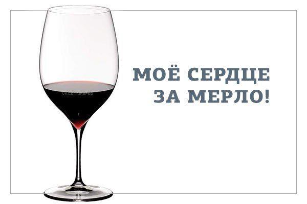 Картинки, приколы про вино картинки