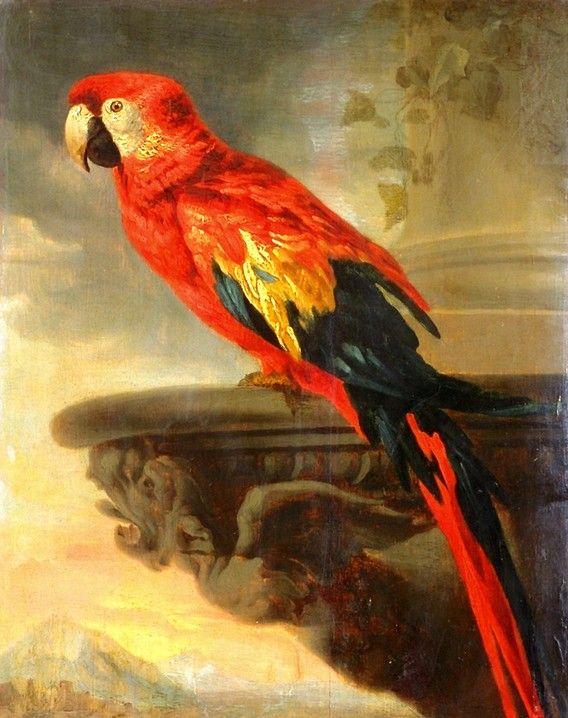 Parrot by Sir Peter Paul Rubens.  Art Experience NYC  www.artexperiencenyc.com/social_login/?utm_source=pinterest_medium=pins_content=pinterest_pins_campaign=pinterest_initial