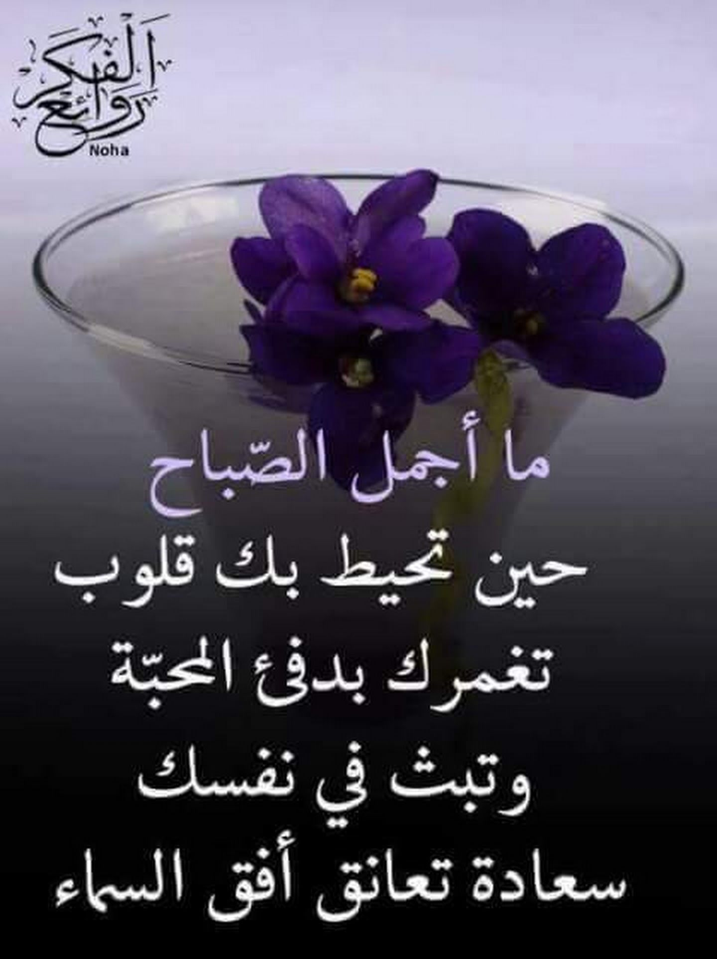 صباح سعادة Good Morning Arabic Good Morning Gorgeous Morning Images