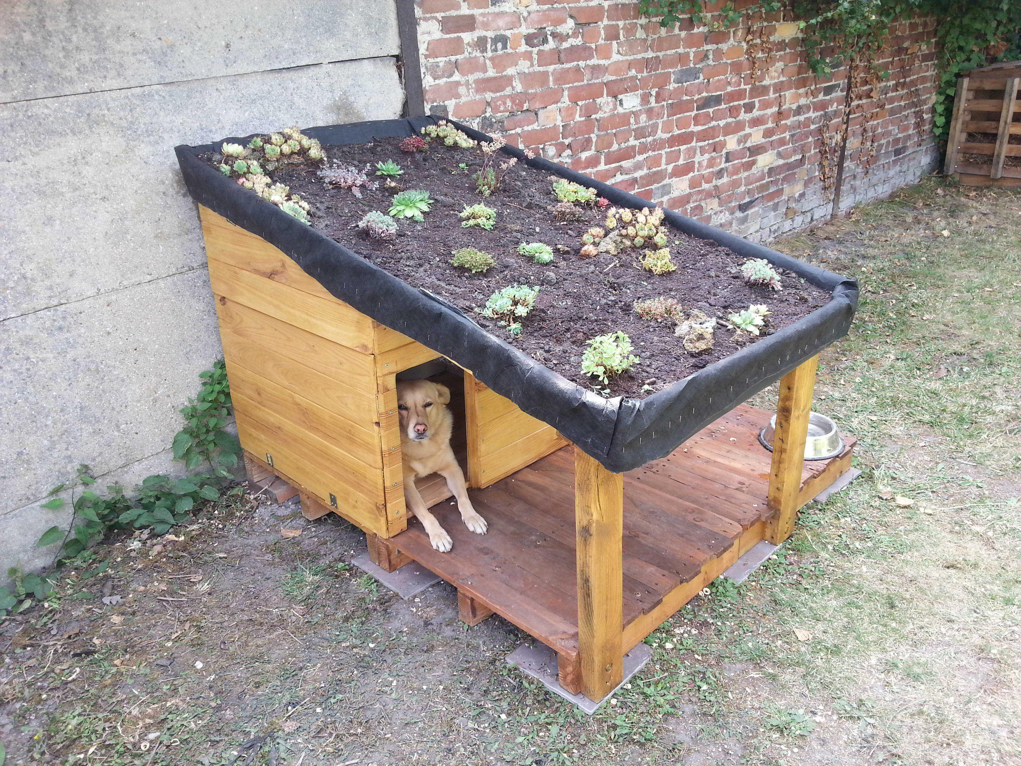 doghouse with green roof niche pour chien avec toiture v g talis e rangement pallet. Black Bedroom Furniture Sets. Home Design Ideas
