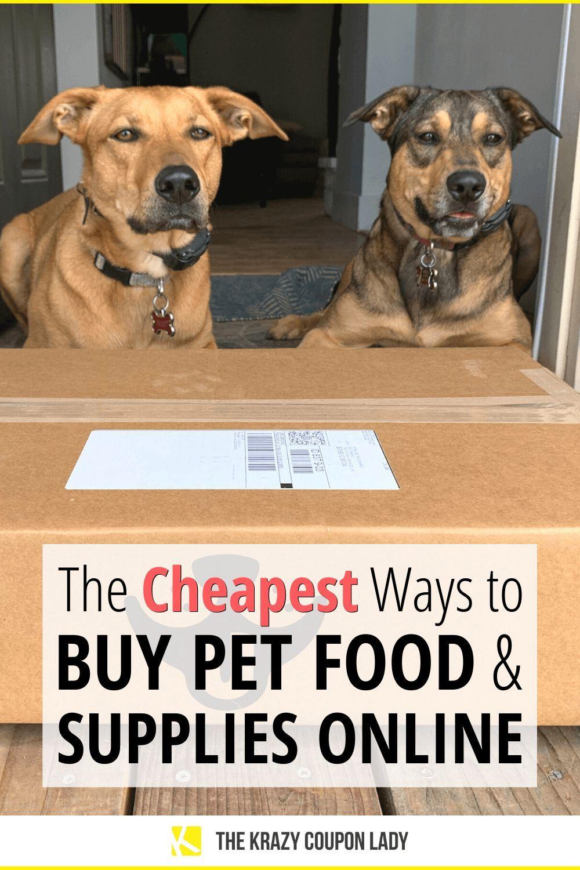 10 Best Websites To Buy Cheap Pet Food And Pet Supplies Online In 2020 Food Animals Cheap Pet Supplies Online Pet Supplies