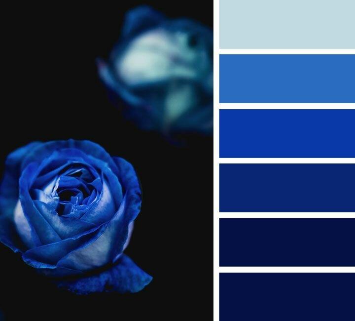 которое сочетание цветов в картинках синий всегда быть курсе