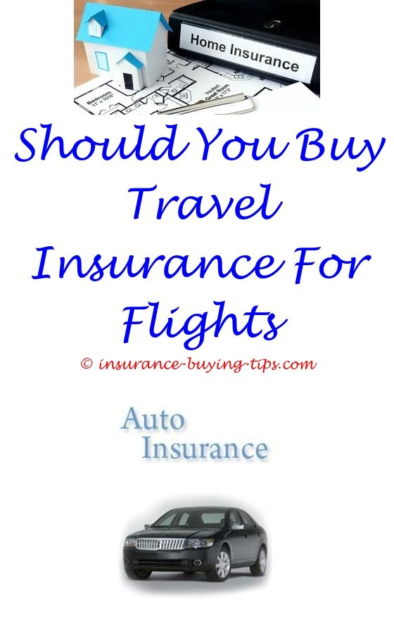 Car Insurance Quotes Ct Best Local Car Insurance Agents  Car Insurance And Insurance Quotes