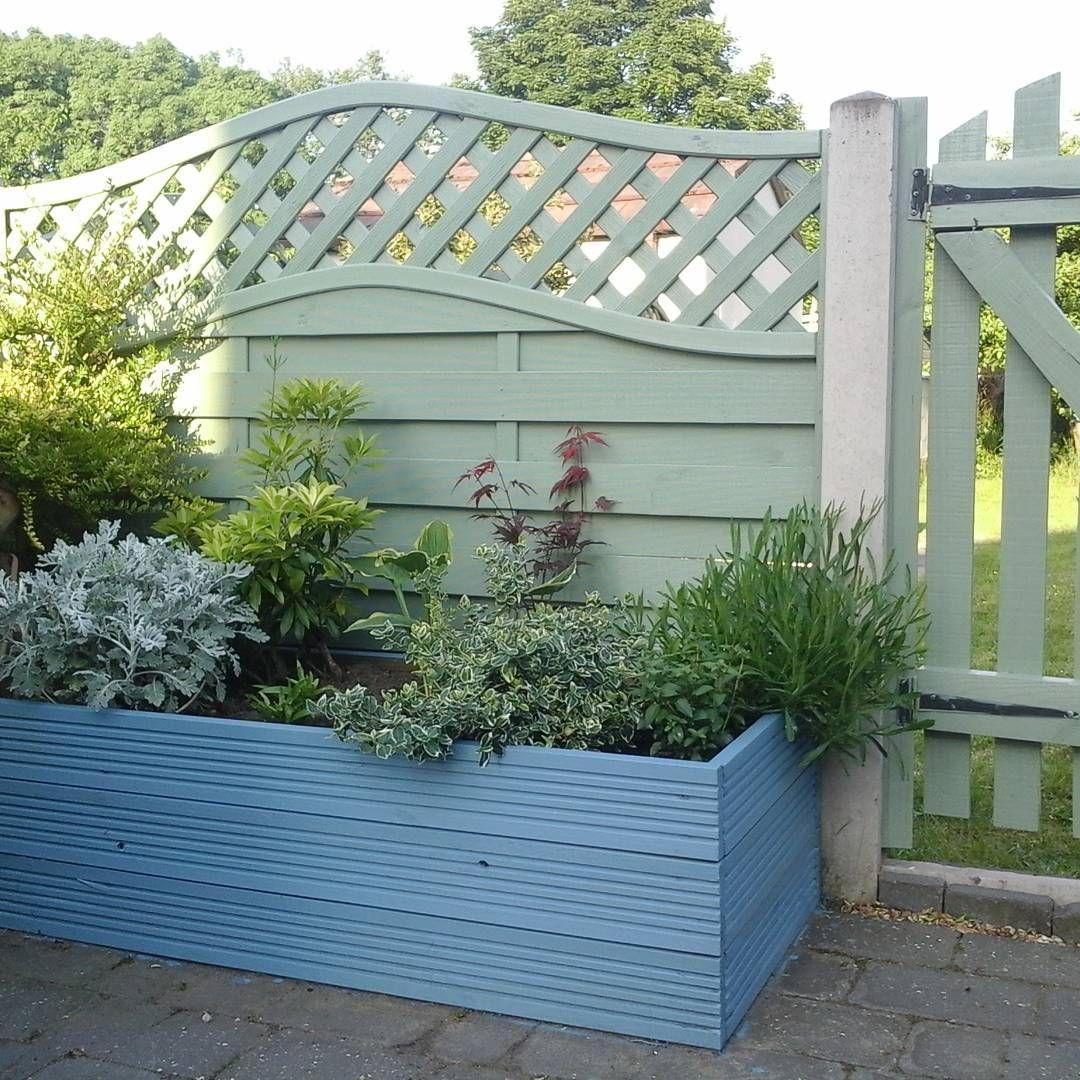 Instagram Photo By Siobhan Bowen Jun 5 2016 At 7 14pm Utc Garden Projects Backyard Oasis Garden
