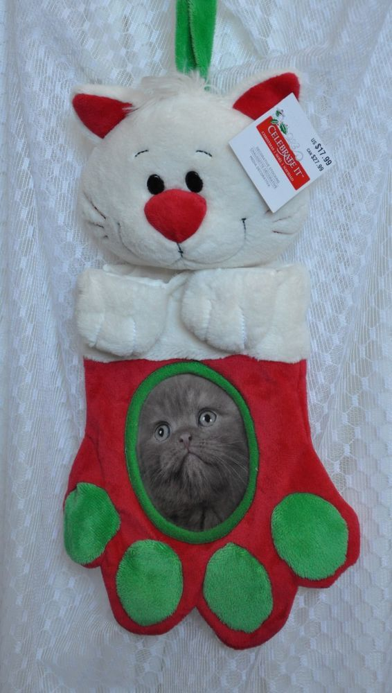 Cat Santa Stocking Christmas Photo Holder Insert Paw Print New W