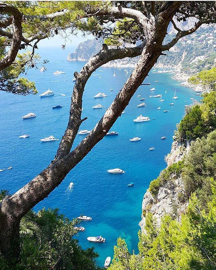 Capri Italy is calling ððð Credit: @alexikonn | Capri ... |Capri Italy Golf