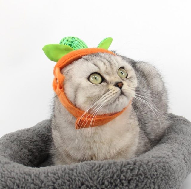 Pet Halloween Hat,Funny Adjustable Pumpkin Hat Party Props Clothing for Cats//Dog Puppies Orange