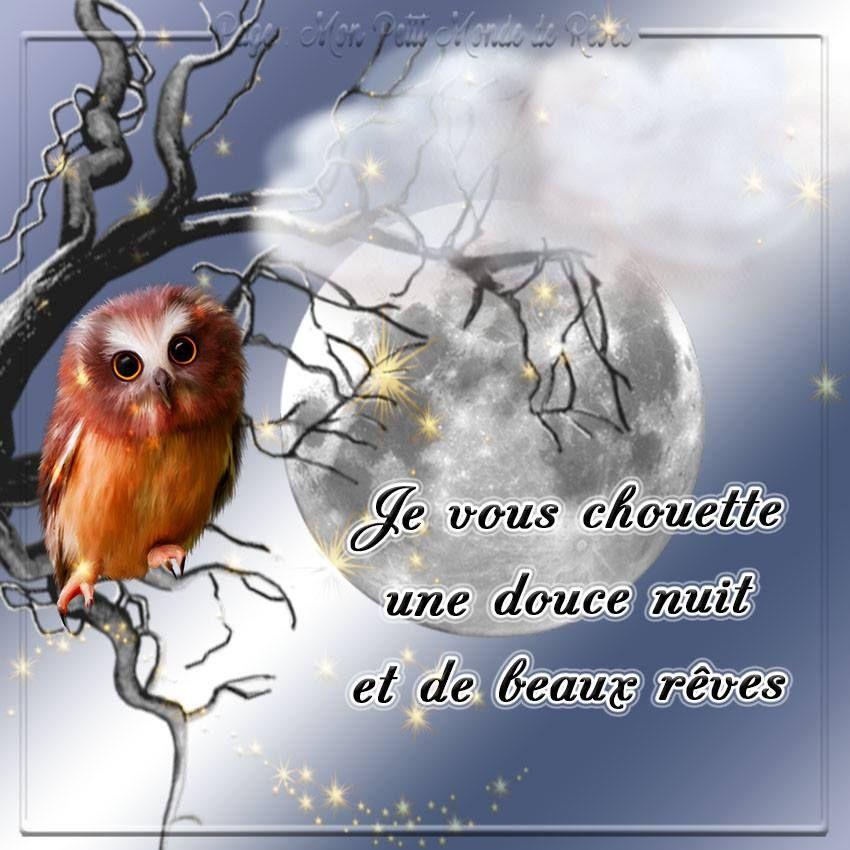 Connu Je vous chouette une douce nuit et de beaua rêves #bonnenuit  DZ05