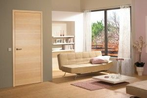 What About Maple Or Cherry Interior Doors   Sleek And Modern?