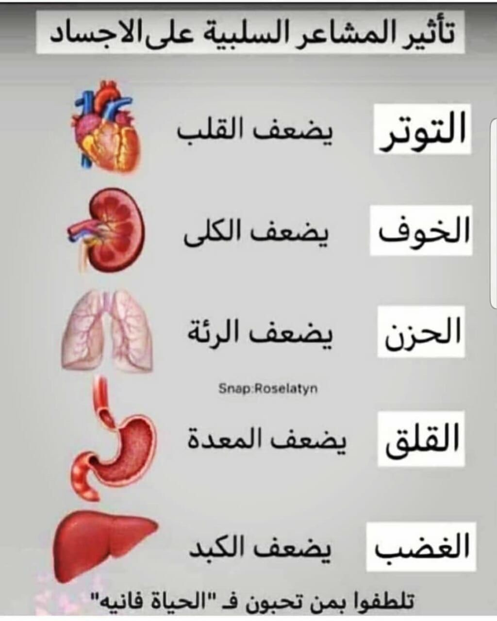 Pin By Naminas On نصايح Positive Notes Health Check Health Advice