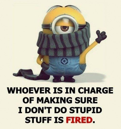 Best 40 Very Funny Minion Quotes