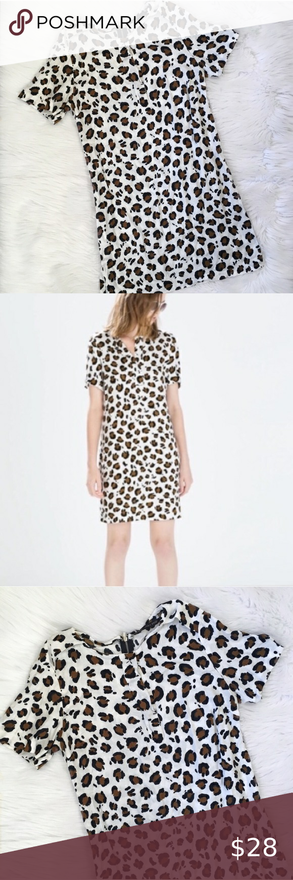 Zara White Cheetah Print Casual Shift Dress Printed Shift Dress Shift Dress Casual Shift Dress [ 1740 x 580 Pixel ]