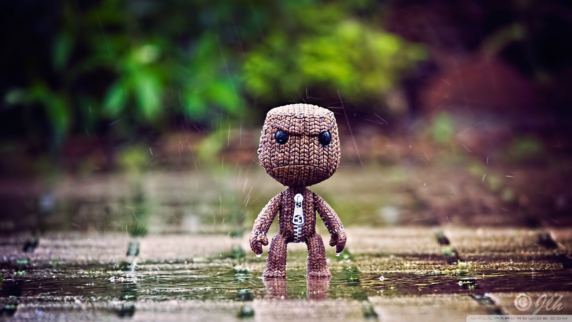 Wallpaper Puppet In The Rain X Full Hd x | wallpapers | Pinterest