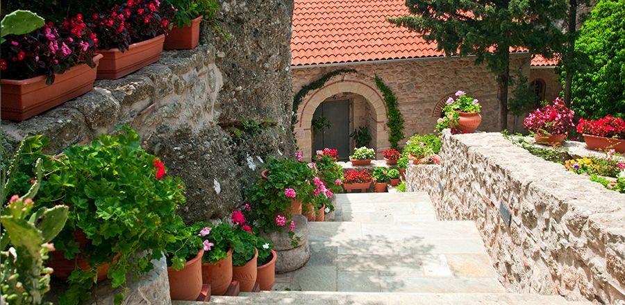 Mediterraner Garten - Pflanzen für zu Hause | Mediterraner garten ...