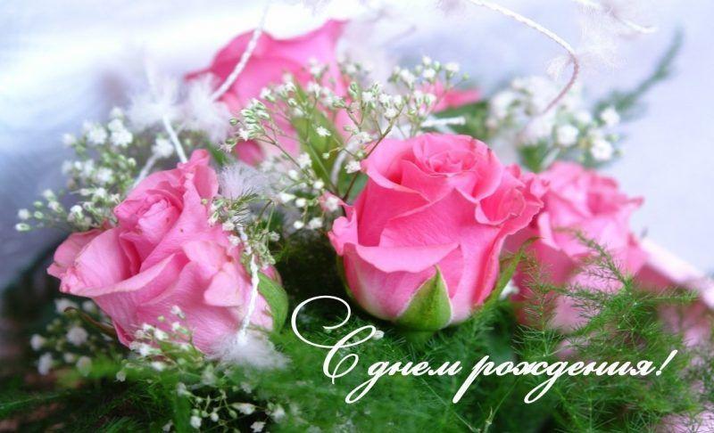 Pozdravleniya S Dnyom Rozhdeniya Plemyannice Ot Tyoti Krasivye I