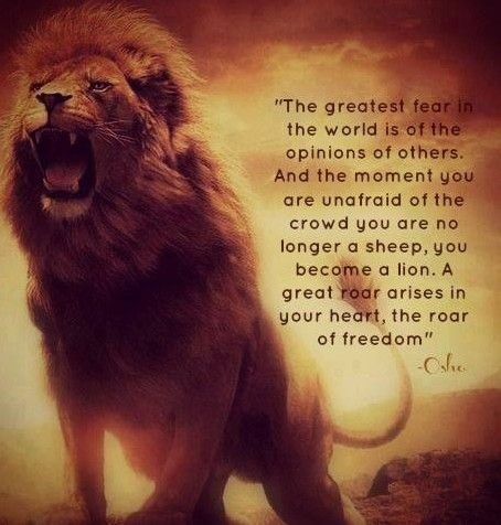 Lion Roaring with quote about freedom. The greatest fear in the world is of the opinion of others. And the moment you are unafraid of the crowd you are no longer a sheep, you become a lion. A great roar arises in your heart, the roar of freedom...