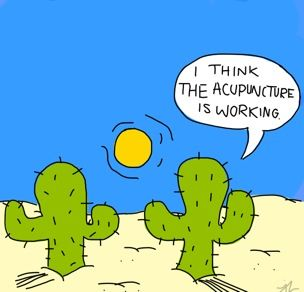 By Jess Bozzy On Draw Something 2 Cactus So Random Pinterest