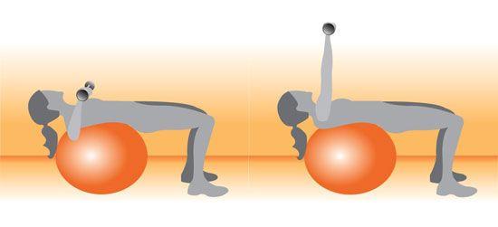 Image result for orange exercise ball