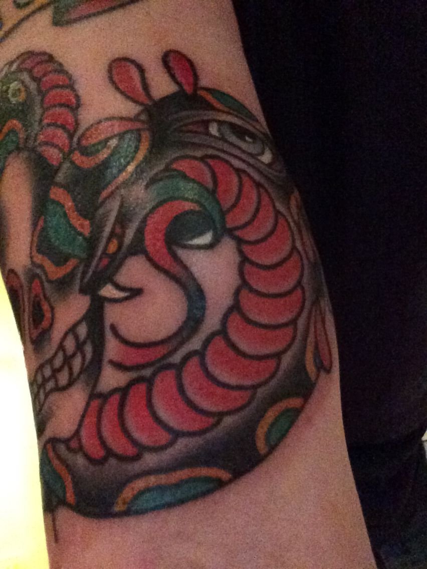 Number 2  Skull and snake close up 2