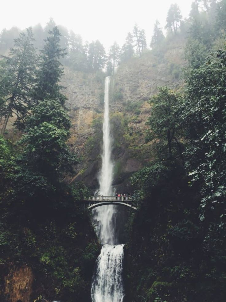101 Things to do in Portland, Oregon - a Local's Guide Oregon USA United States of America Travel Destinations Honeymoon Backpack Backpacking Vacation Bucket List Budget Off the Beaten Path Wanderlust Photography #travel #honeymoon #vacation #backpacking #budgettravel #offthebeatenpath #bucketlist #wanderlust #Oregon #USA #America #UnitedStates #exploreOregon #visitOregon