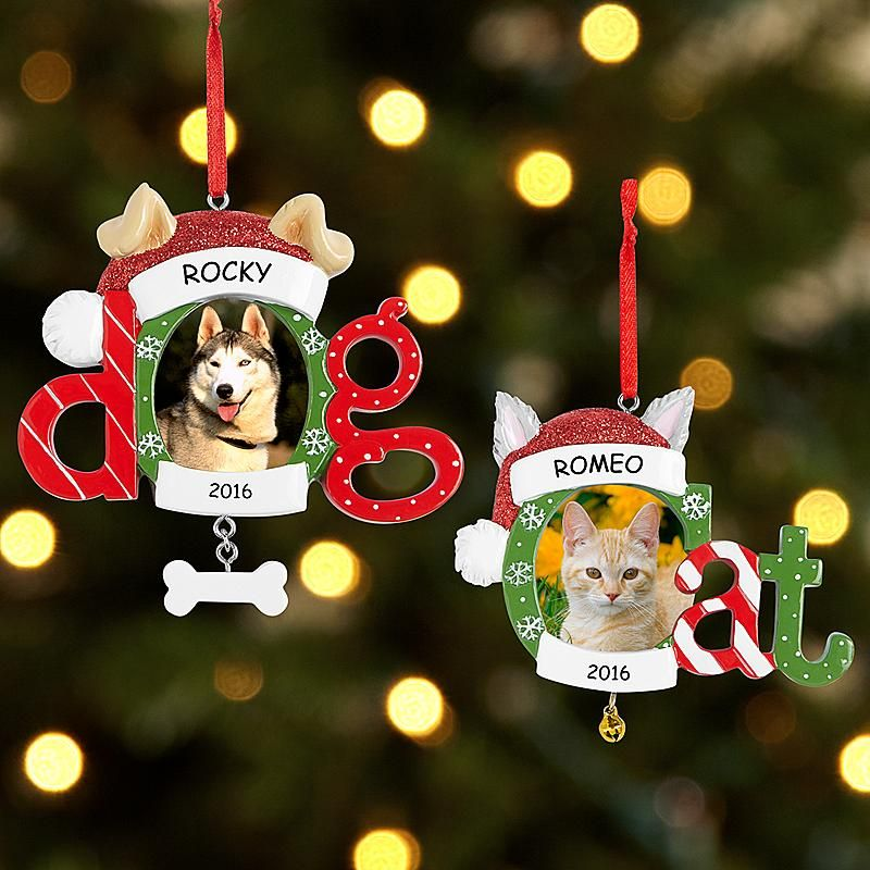 Dog and Cat Frame Ornament   Ornament