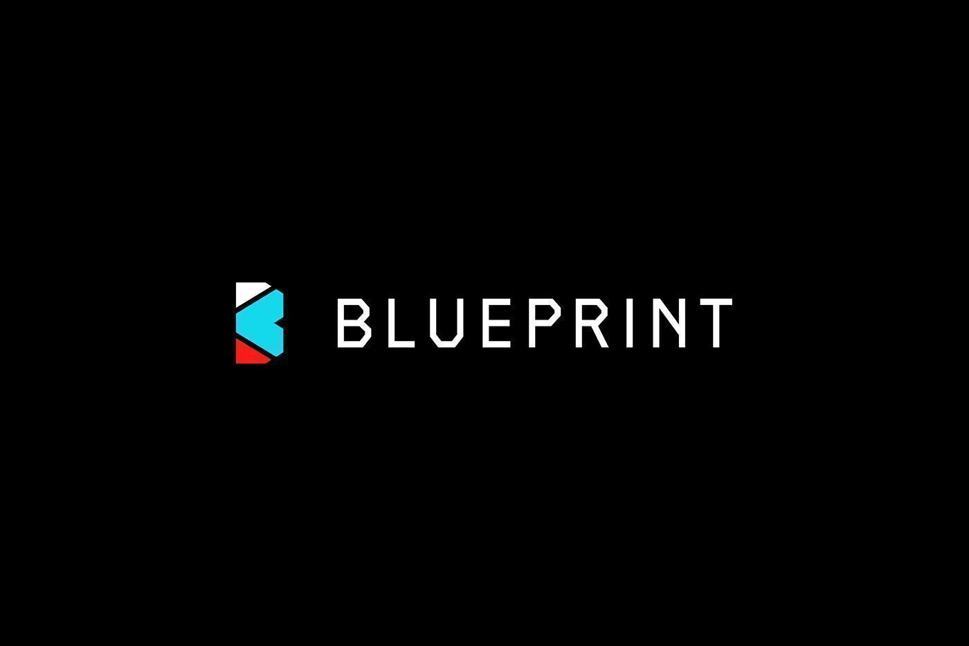 Blueprint is the first ever global holistic student athlete blueprint is the first ever global holistic student athlete development digital platformcommunity their mission is to unite the global sports community malvernweather Choice Image