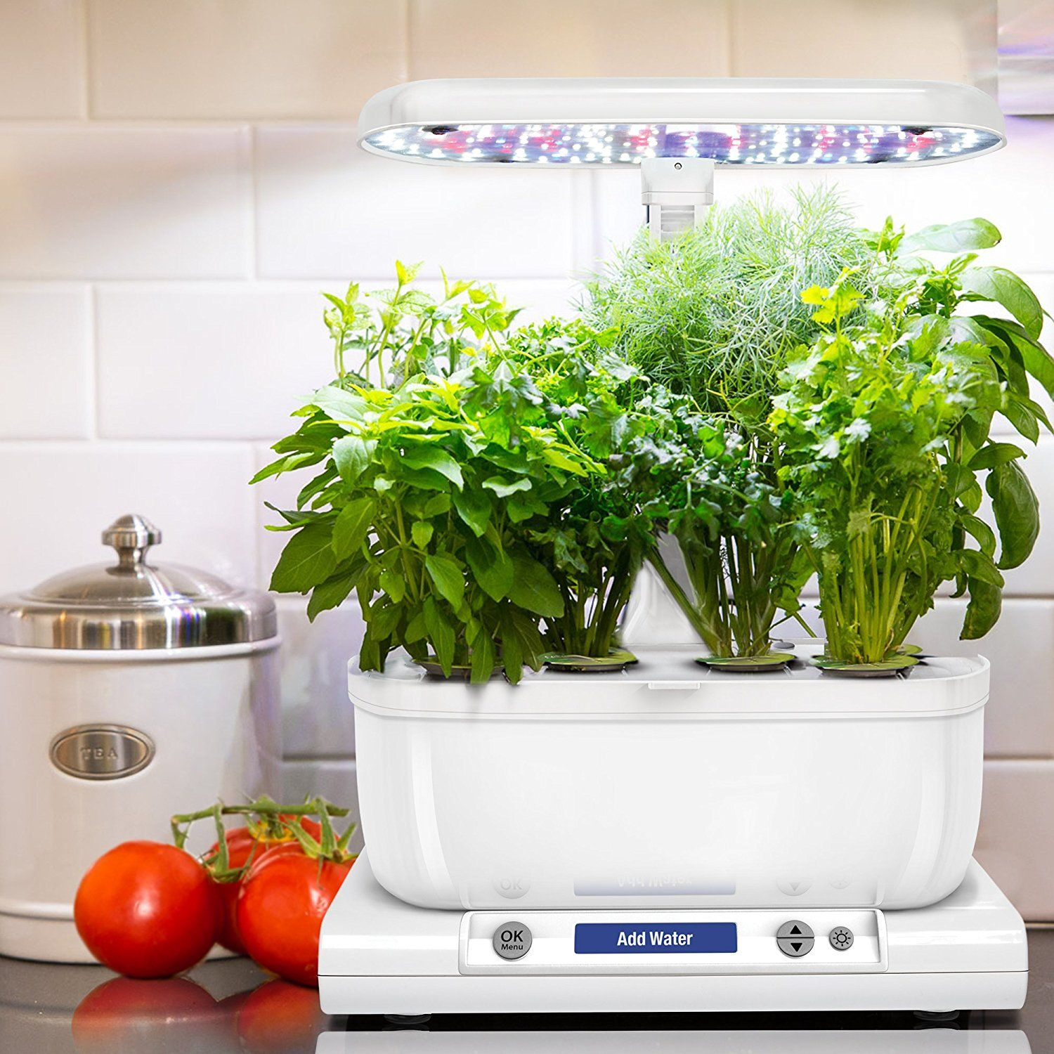 Grow An Indoor Garden No Green Thumb Required Ad 400 x 300