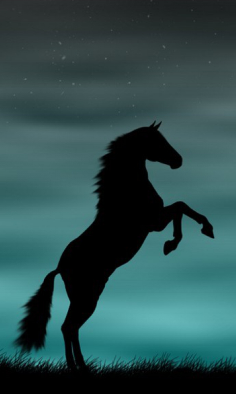 Black Horse Running Hd Desktop Wallpaper Widescreen High Horse Wallpaper Horse Background Horse Silhouette