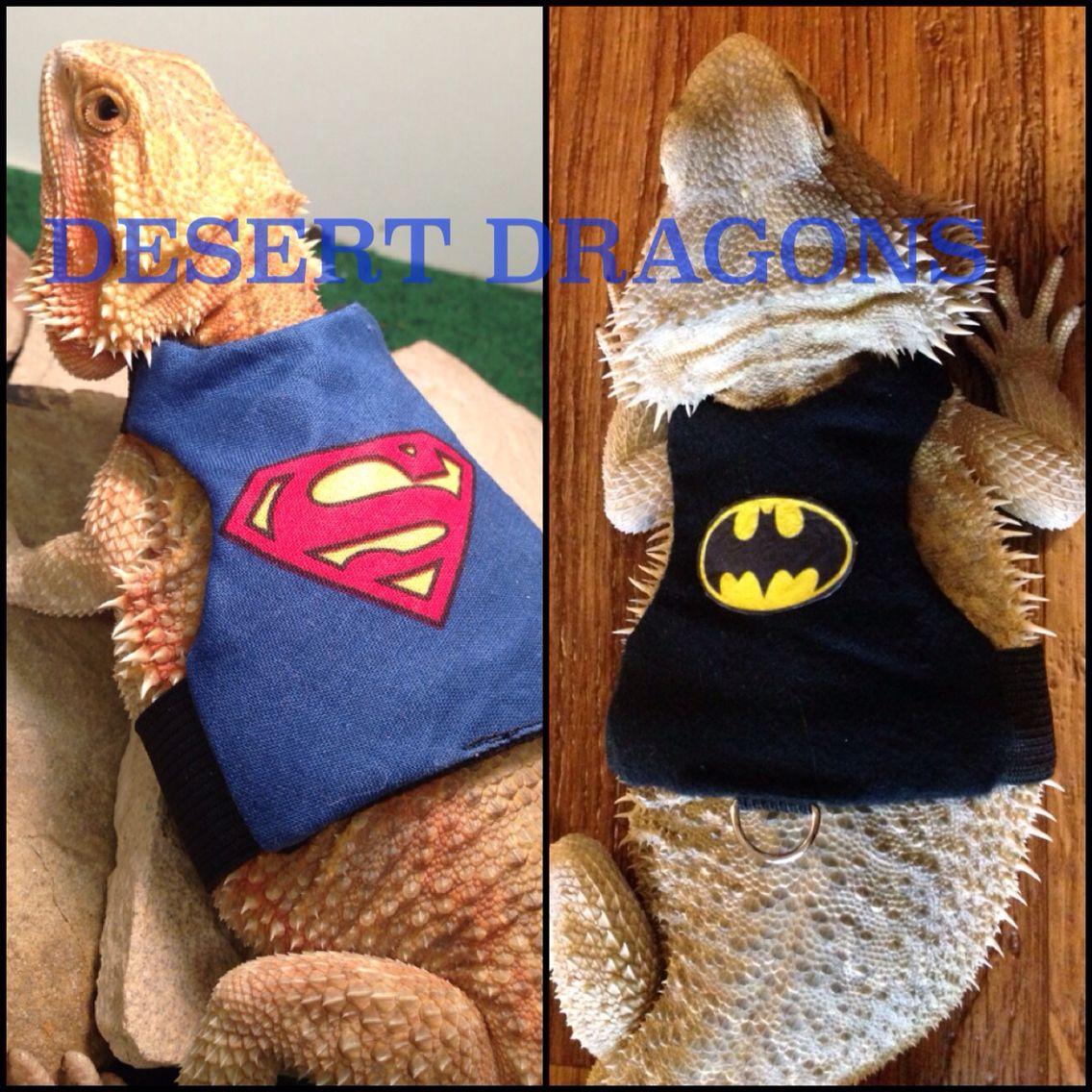 Custom Harness For Bearded Dragon Http://www
