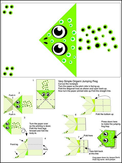 Origami Jumping Frog Instructions And Paper Pinterest Origami