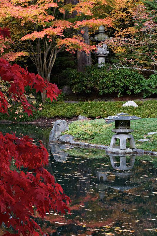 Nitobe Memorial Garden, Vancouver, Canada. Photography by Daniel Mosquin. #daniel_mosquin #nitobe_memorial_garden #gardens #asia #canada #vancouver #water ...