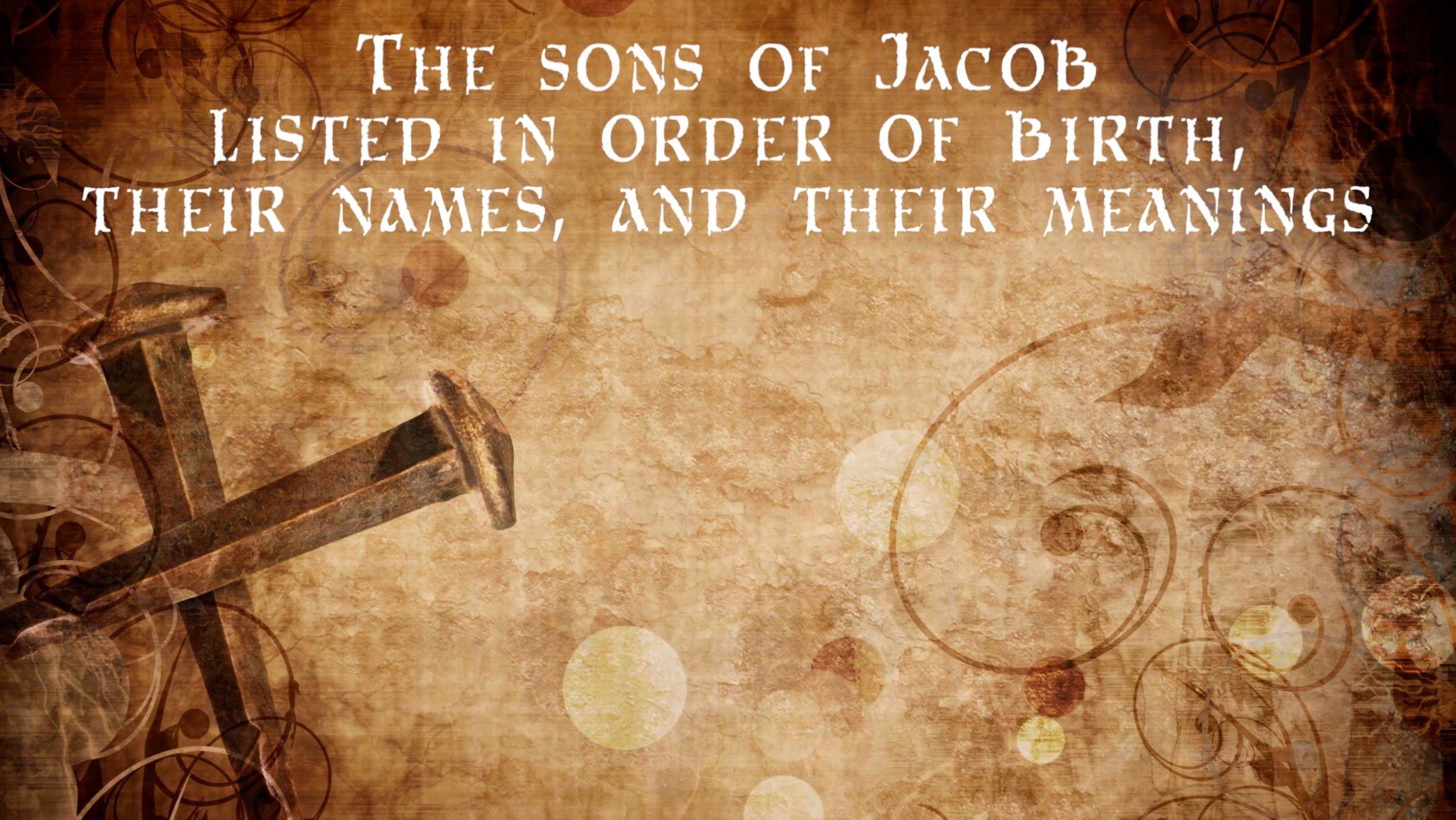 The Gospel Veiled In Jacob S 12 Sons