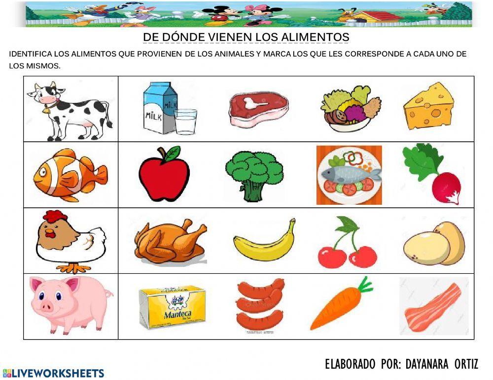 Alimentos Derivados De Los Animales Alimentos Ejercicio Alimentos Preescolar Loterias Para Niños Actividades