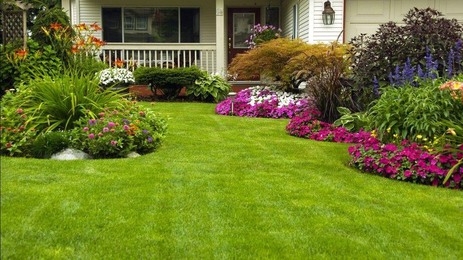 Front Yard Flower Garden Ideas Cute