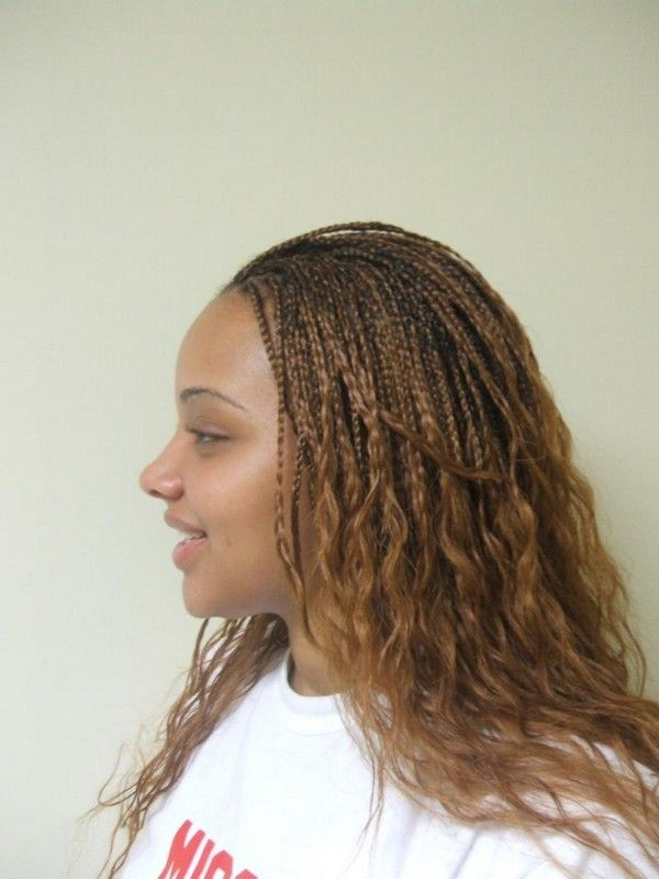 72 Best Micro Braids Hairstyles with Images | Micro Braids ...